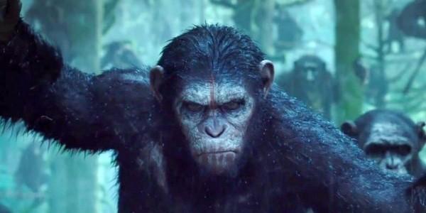 Planeta dos Macacos: A Guerra no Cine Uniplex Avaré