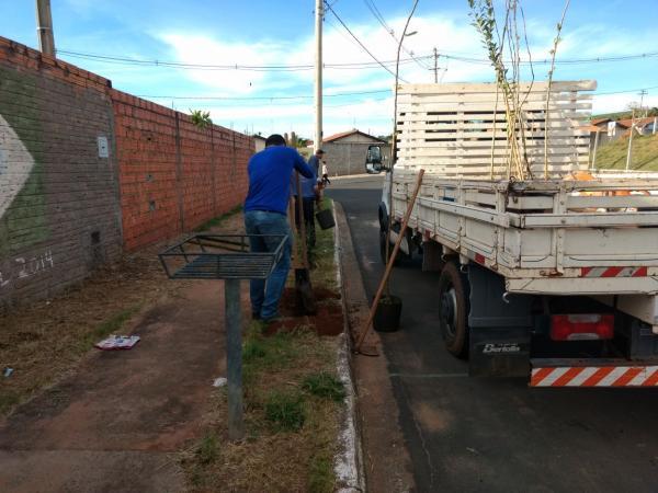 Bairro Santa Maria de Botucatu recebe projeto piloto de Floresta Urbana