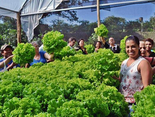 Fatec Ourinhos integra projeto de fomento à agricultura familiar