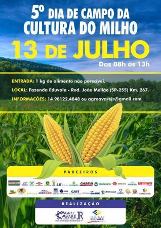 5º Dia de Campo da Cultura do Milho Eduvale acontecerá em julho