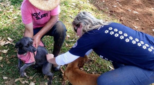 Vacinação Antirrábica na zona rural de Botucatu começa em 1º de agosto