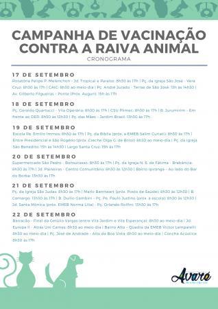 VISA prepara campanha de vacinação contra a raiva animal