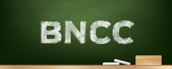 Secretaria promove debate sobre diretrizes da BNCC