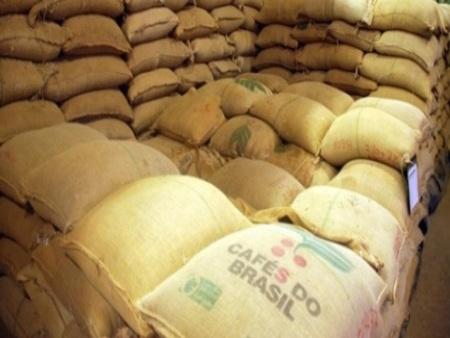 Preço da saca de café diminui e preocupa produtores da região de Avaré