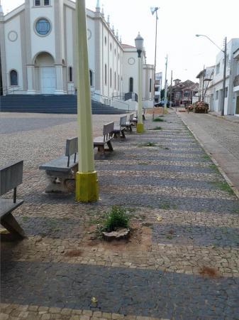 Internautas questionam corte de árvores no Largo São Benedito